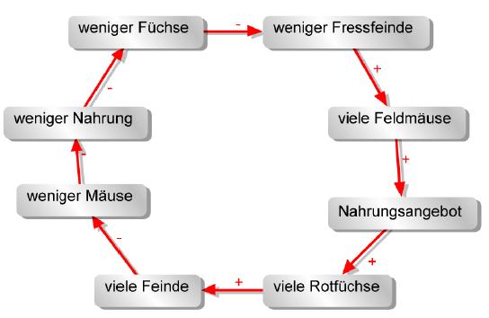 kreislauf_fuchs